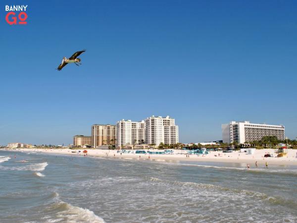 Tampa Körfezi'nde bulunan Florida'daki Clearwater'ın nüfusu 116.478