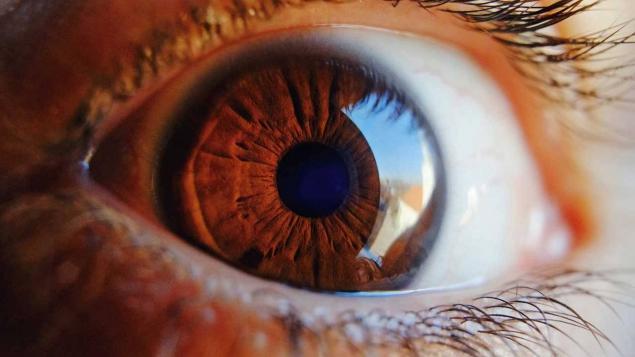 Yapay Retina