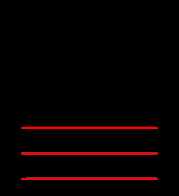 Müller-Lyer optik illüzyonu. Fibonacci / Wikipedia , CC BY-SA