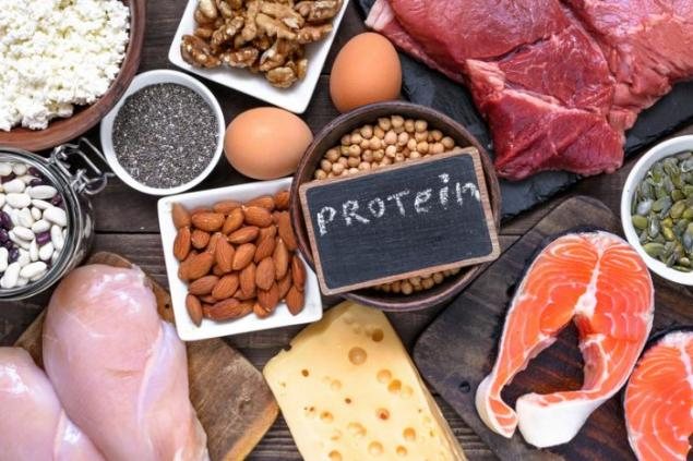 Protein Türleri