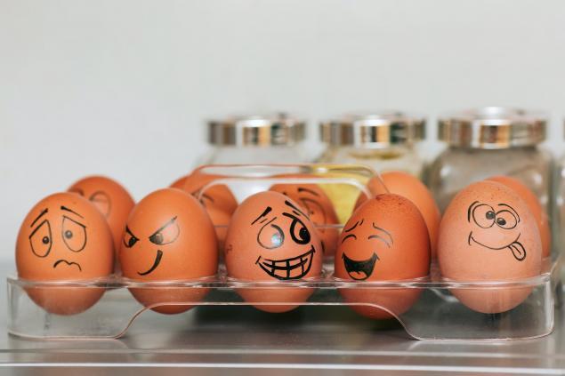 Bütün Yumurta