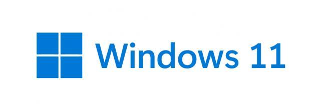 Windows 11 Logosu