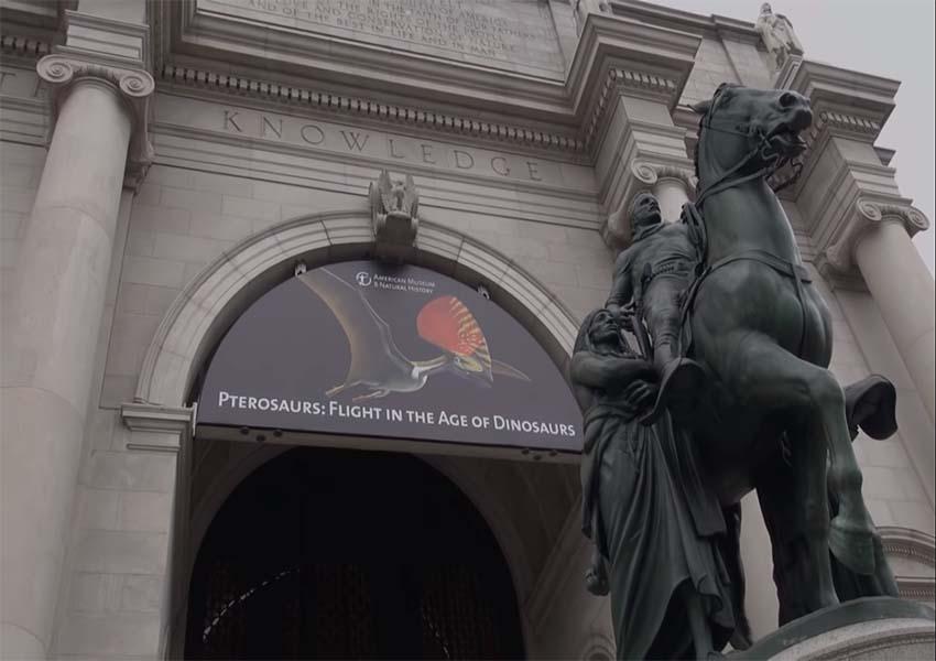 Dünyanın En Popüler ve En Çok Ziyaret Edilen 10 Müzesi