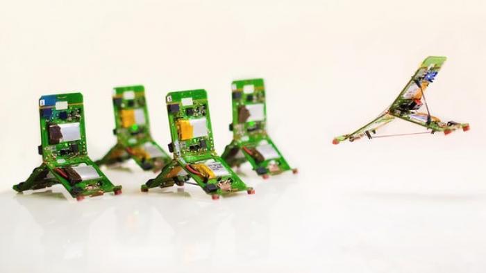 Küçük Robotlar, Karmaşık Görevleri Tamamlamak İçin Birlikte Çalışıyor